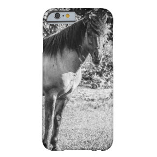 Black and White Konik Horse Barely There iPhone 6 Case