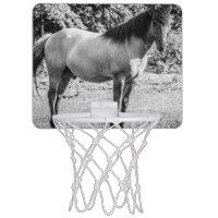 Black and White Konik Horse Mini Basketball Backboards
