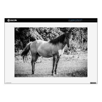 Black and White Konik Horse Laptop Skin