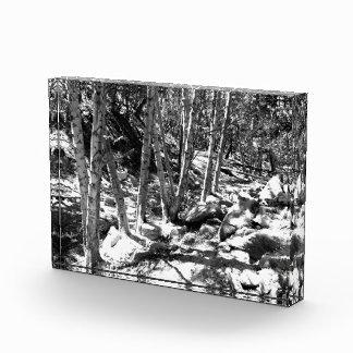 Black And White Landscape 22 Awards