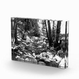 Black And White Landscape 24 Award