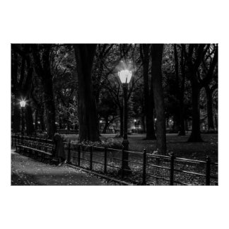 Black and White Landscape Photo of Central Park Poster