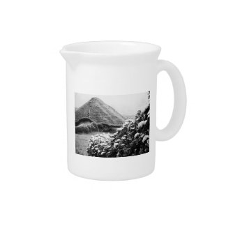 Black and white landscape with hydrangeas beverage pitcher