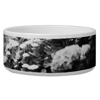 Black and white landscape with hydrangeas bowl
