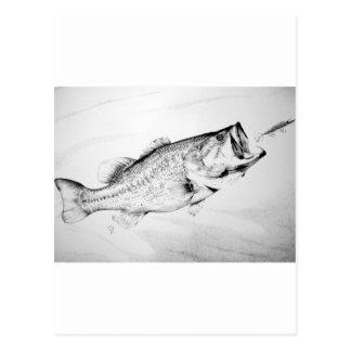 black and white largemouth bass chasing lure. postcard