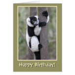 Black and White Lemur Happy Birthday Greeting Cards