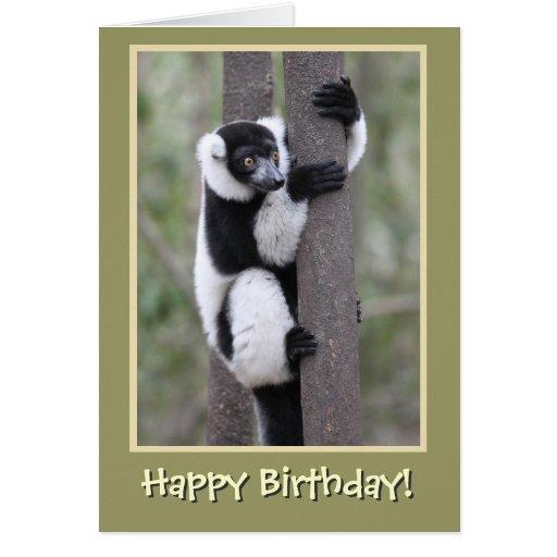 Black and White Lemur Happy Birthday Card