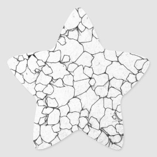 Black And White Lines Star Sticker