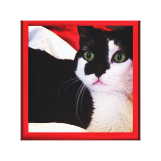 Black and White Love Cat On Red Canvas Canvas Prints