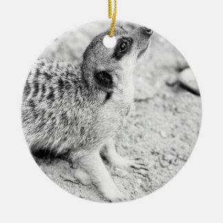 Black and White Meerkat, Animal Photography Ceramic Ornament