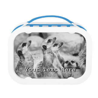 Black and White Meerkat Photograph Lunch Box