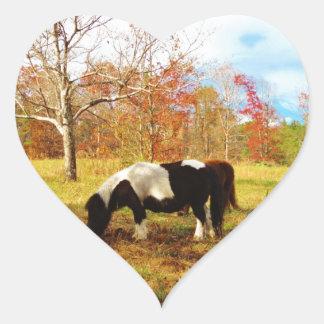 Black and White Miniature Pony / Horse Heart Sticker