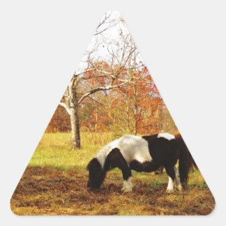 Black and White Miniature Pony / Horse Triangle Sticker