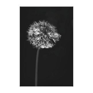Black and White Minimalist Dramatic Dandelion Seed Canvas Print