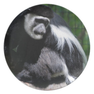 Black and White Monkey Plate