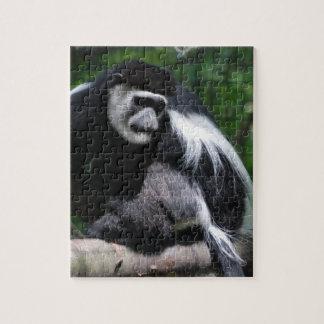 Black and White Monkey Puzzle