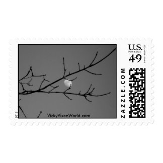 black and white moon and tree stamps