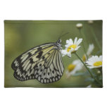 Black and White Nymph Butterfly Place Mats