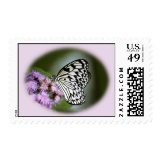 Black and White Nymph Butterfly Postage