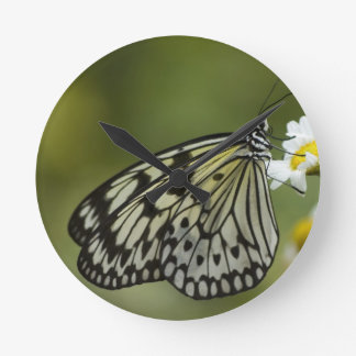 Black and White Nymph Butterfly Round Wall Clock