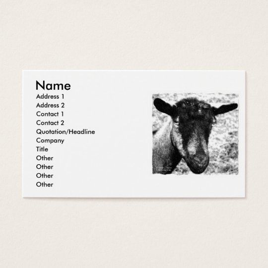 Black and white Oberhasli doe goat head view Business Card