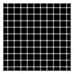 Black and White Optical Illusion Art Posters