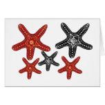 Black and white, orange and red starfish card