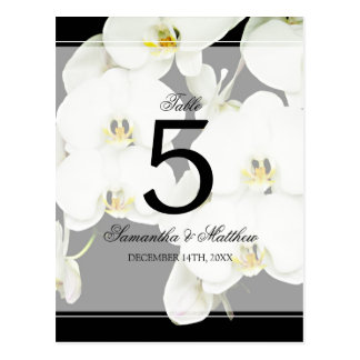 Black and White Orchid Wedding Table Number Postcard