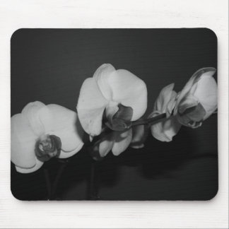 black and white orchids mouse pad