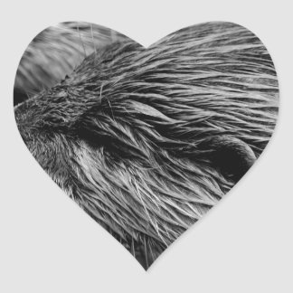 black and white otters heart sticker