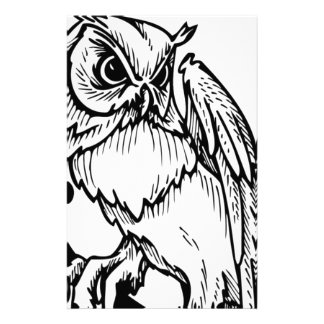 Black and white owl design stationery