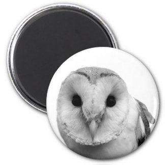 Black and white owl photo magnets