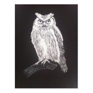 black and white owl postcard