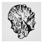 Black and White Oyster Shell Poster