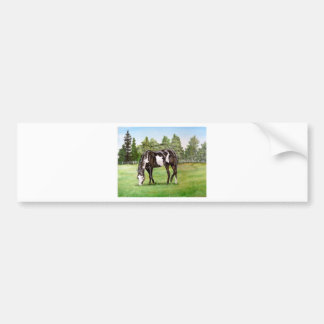 Black and White Paint horse/pony grazing in field Bumper Stickers