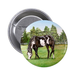 Black and White Paint horse/pony grazing in field Button