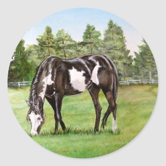 Black and White Paint horse/pony grazing in field Classic Round Sticker