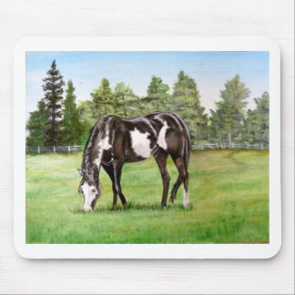 Black and White Paint horse/pony grazing in field Mouse Pad