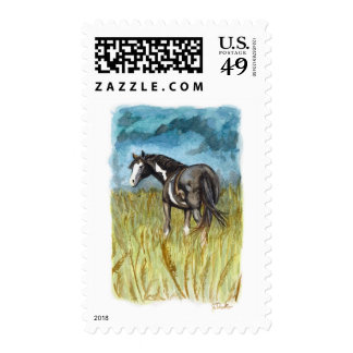 Black and White Paint Horse Watercolor Art Postage