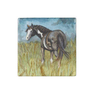 Black and White Paint Horse Watercolor Art Stone Magnet