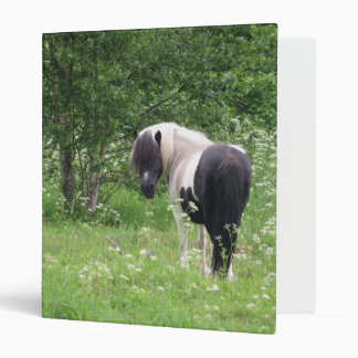 Black and White Paint Pony in Grass and Flowers Binder