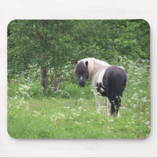 Black and White Paint Pony in Grass and Flowers Mouse Pad