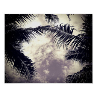 Black and White Palm Tree Beach Decor Photo