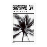 black and white palm tree postage
