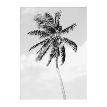 Beach Themed Black and white palm tree tropical summer acrylic wall art