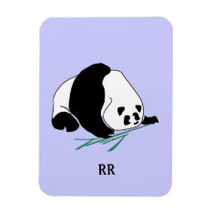 Black And White Panda Eats Bamboo Flexi Magnet at Zazzle
