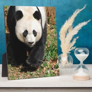 Black and White Panda Photo Plaque