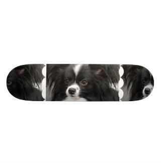 Black and White Papillon Skate Decks