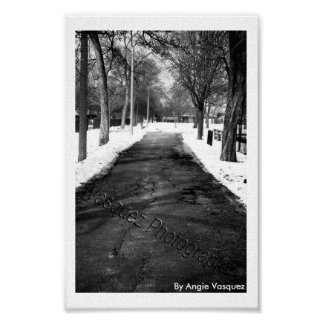 Black and White Pathway Poster