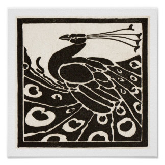 BLACK AND WHITE PEACOCK POSTER